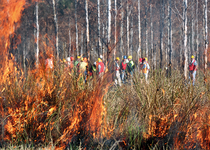 There is no universal 'right' level of prescribed fire because there are too many competing objectives.