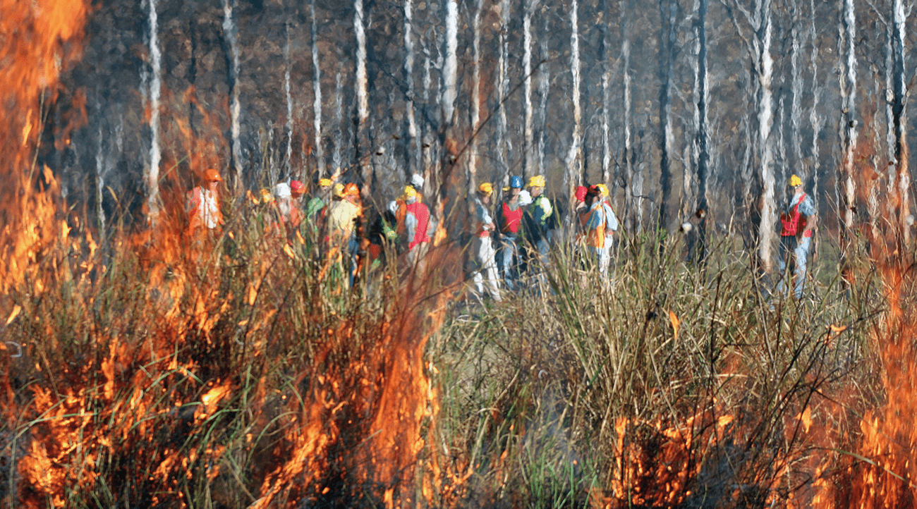 Bushfire and Natural Hazards Cooperative Research Centre